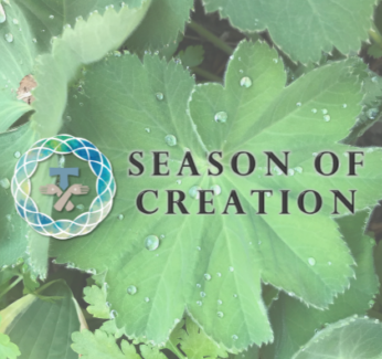 Threads – Season of Creation