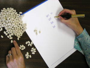 Accountant or book keeper counting beans and marking tally