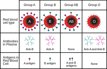 blood types ad FSH