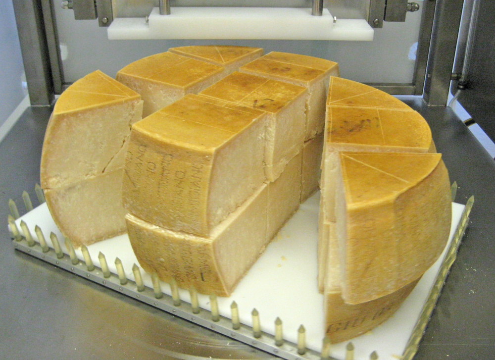 Parmesan Cutting Machine - CS-3SA FoodTools