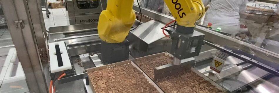 Robotic Cake Cutting