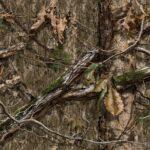 Mossy Oak DNA