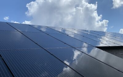 Solar Panel Cleaning, Wellington, Florida