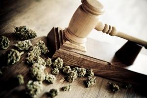 Bradley-&-Gmelich---Cannabis-Law