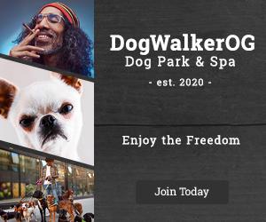 Ad_DogWalkerOG_2020_300x250