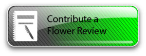 Click to contribute a review of cannabis flowers.