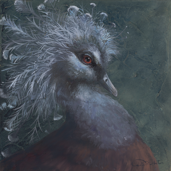 """""""Good Hair"""" - Victorian Crowned Pigeon, Oil on Canvas"""