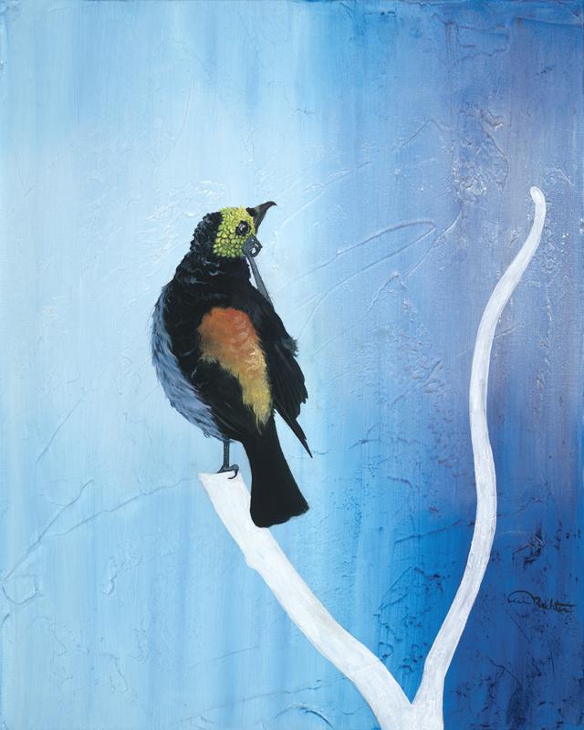 """""""Itchy"""" Oil on Canvas Bird Art"""