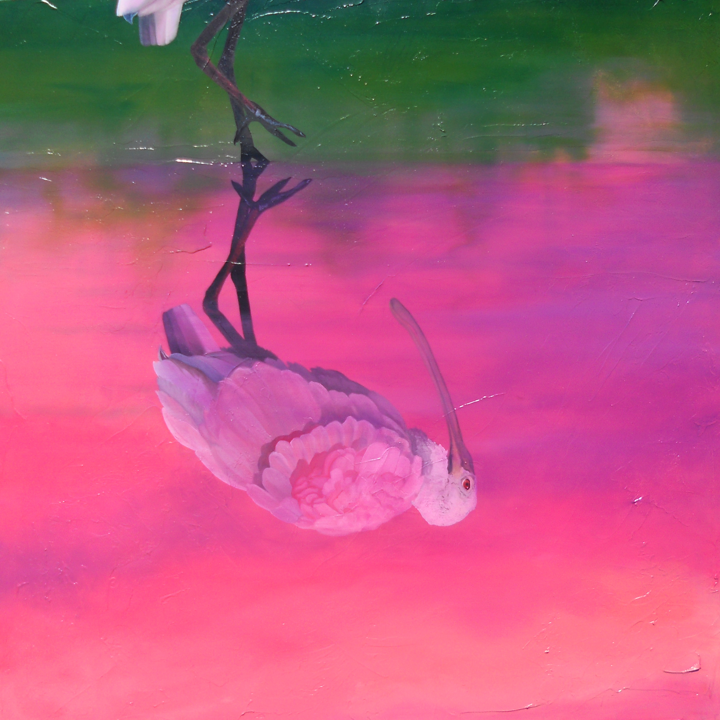 """Pineapple Cake"" new artwork roseate spoonbill oil on canvas"