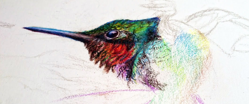 Hummingbird Artwork by Allison Richter