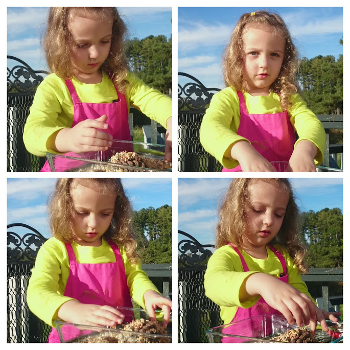 Making Pine Cone Bird Feeders