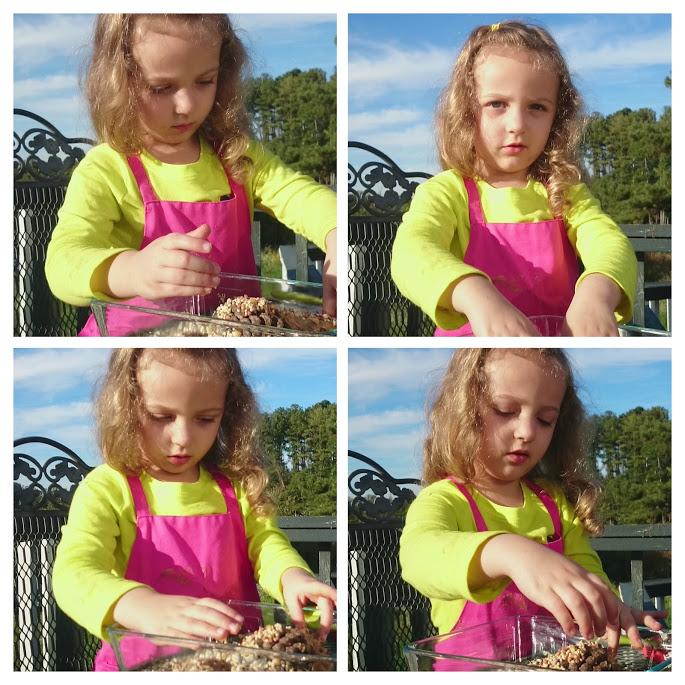 Making Pine Cone Bird Feeders