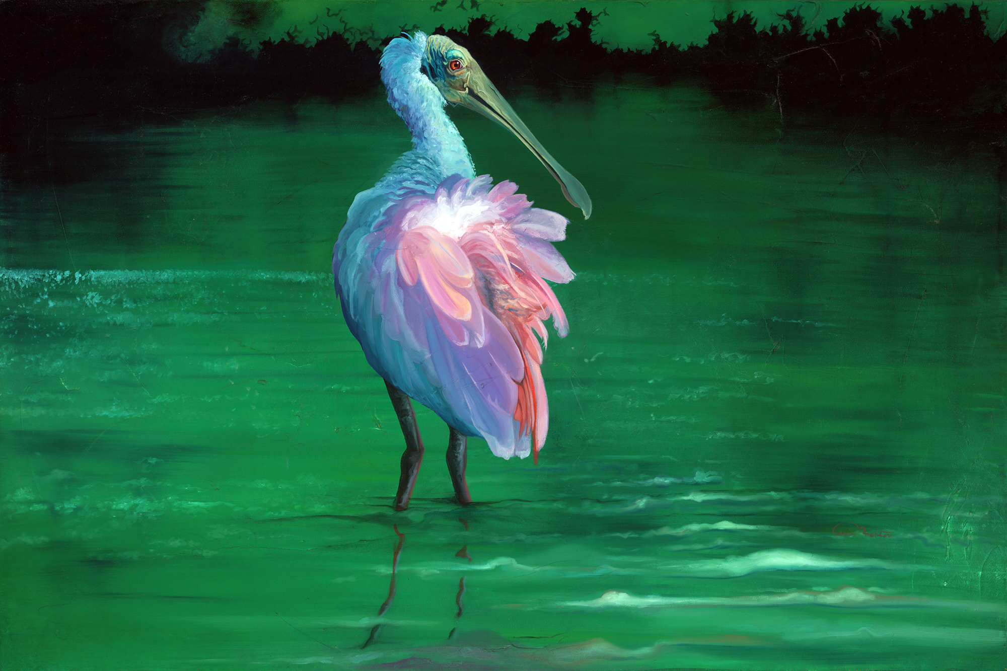 """Spoonbill Original Artwork Oil on Canvas for sale """"On the Flip-side"""" is a 24' h x 36' w of a Roseate Spoonbill standing in quiet waters."""