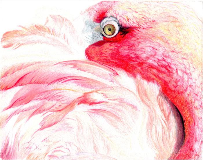 """Tucking In"" Pink Flamingo Original Artwork Artist Signed Prints for Sale"
