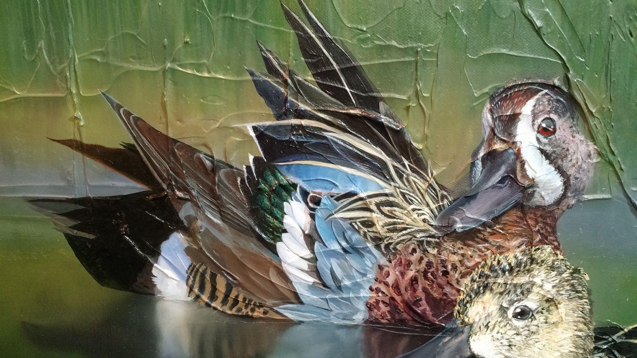 Teal Wing Ducks Oil On Canvas Progress Image