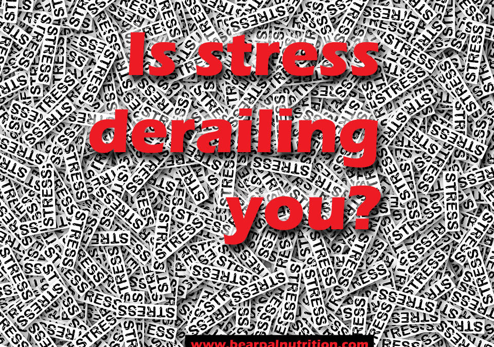 Is stress derailing you?