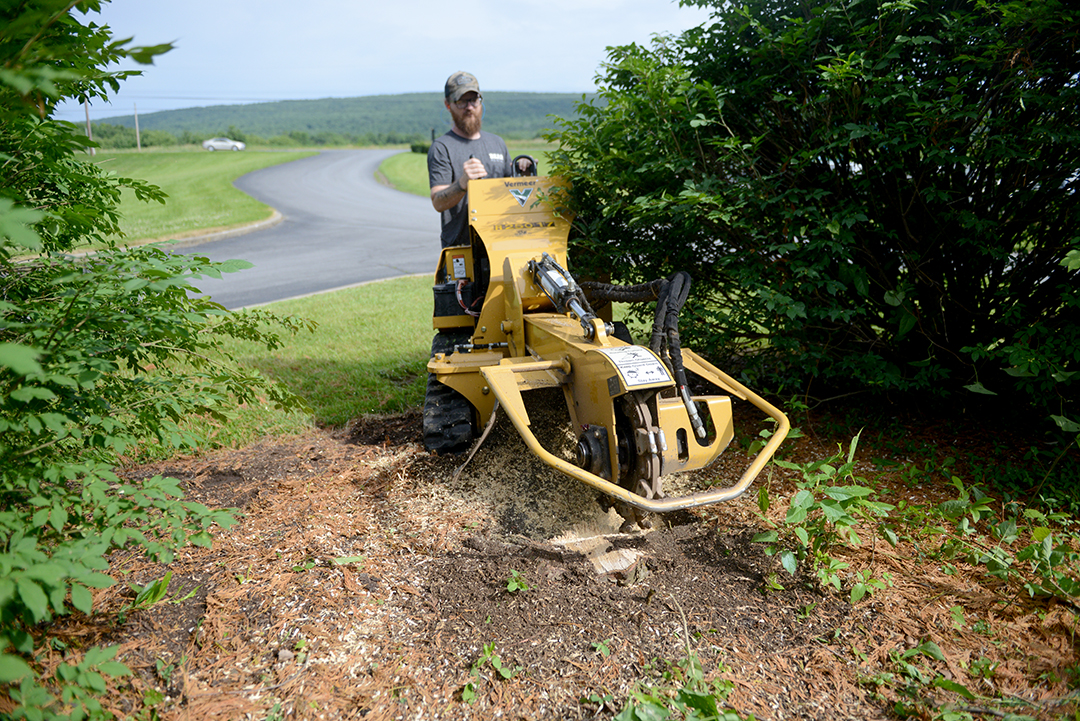Using a stump grinder to remove a dead tree