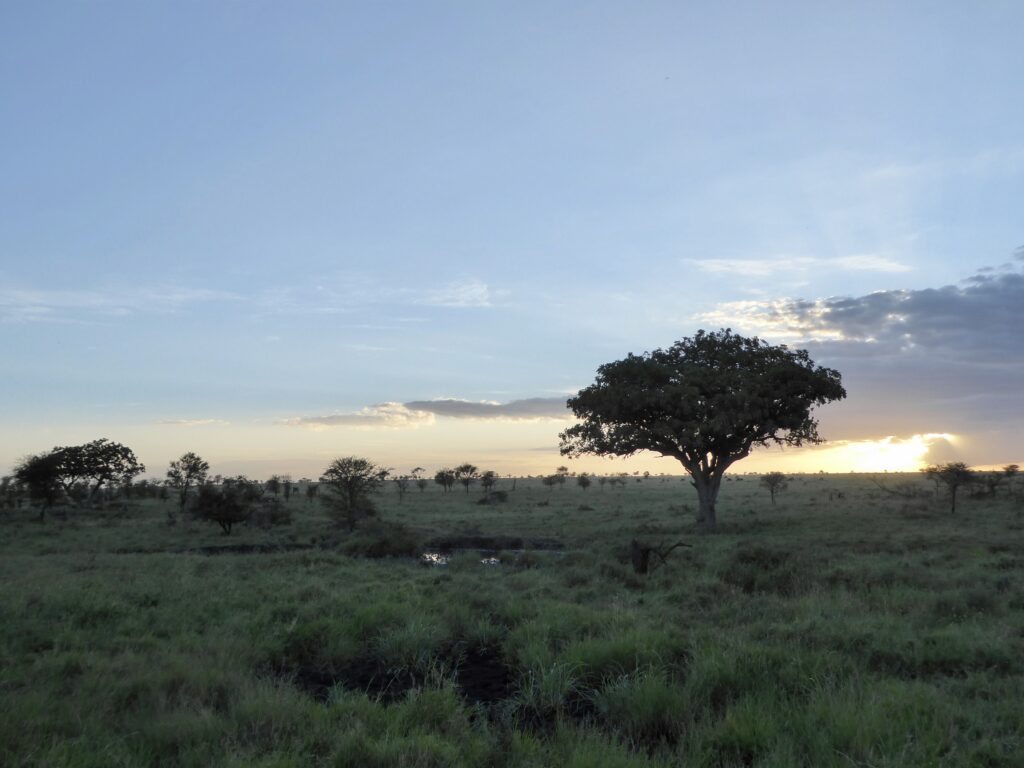 Climate Change and Africa Picture