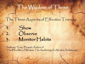 The Wisdom of Three Effective Training