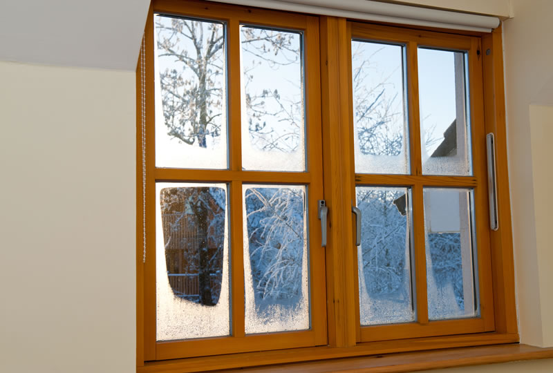 Need New Windows in Michigan? Here Are 5 'Must Know' Tips