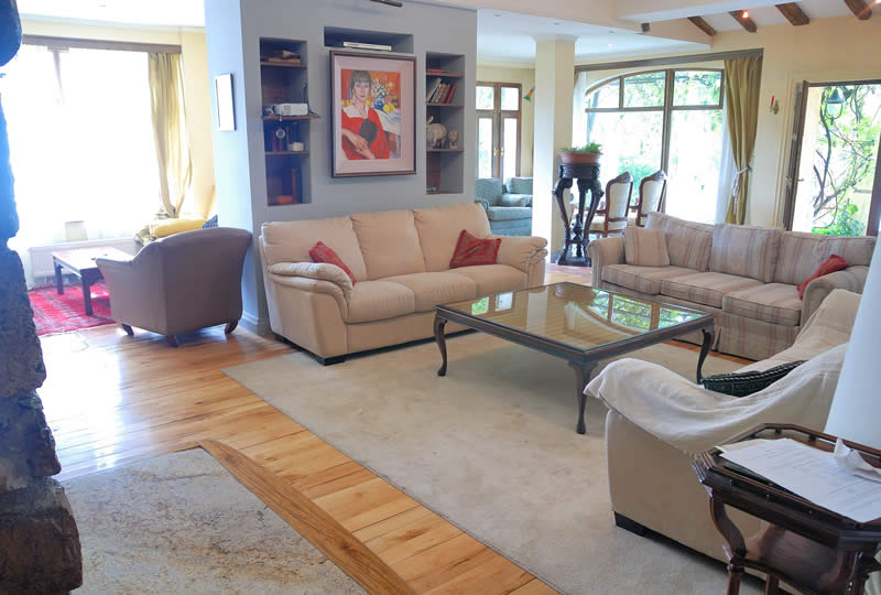 Living Room Windows Installation in Downriver Michigan
