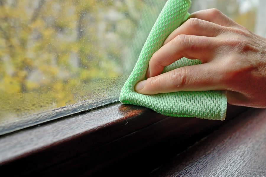 Condensation in Window