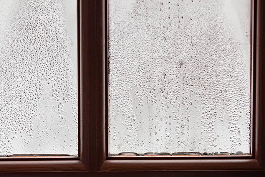 Window Leak in Ann Arbor MI