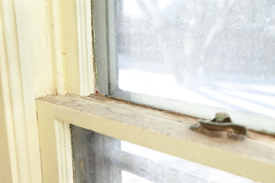 Replacement Windows in Wyandotte Michigan: Everything You Need to Know