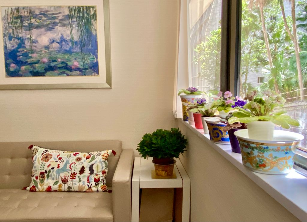 402 May room plants w sofa-TO REPLACE