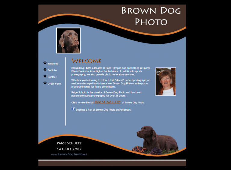 Brown Dog Photo