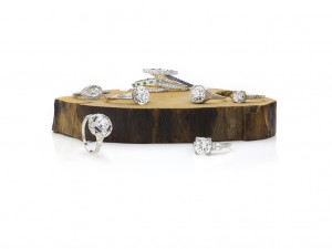 Image of Vintage Jewelry on Log on White by Canaan Albright