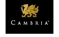 mccabinet cambria logo