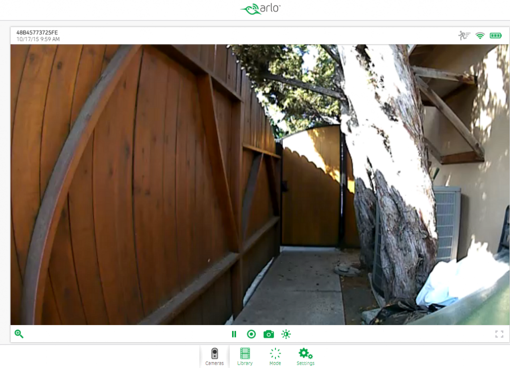 Our side-yard camera view