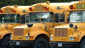 School-Buses--GENERIC-HD--1-9-09---18449617