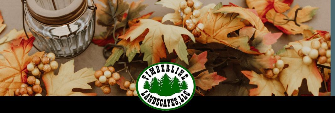 Happy Thanksgiving – November, 2019