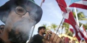Puerto Rico Marijuana