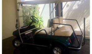 Club Car DS 2008- New Batteries, Carritos de Golf – Club Car Año 2008, $3,500