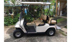 NITIDO EZ-GO '07 , Carritos de Golf – EZ Go Año 2007, $2,700 , OMO