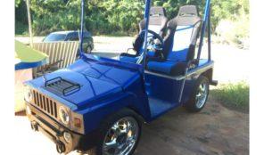 Gasolina, Carritos de Golf – Club Car Año 2010, $3,500