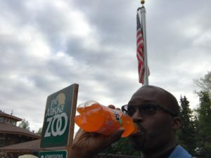 Fanta at The Alaska Zoo