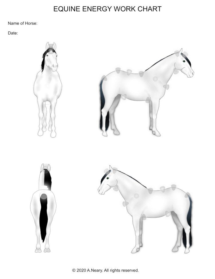Equine Energy Work Chart
