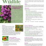 WWF garden brochure web