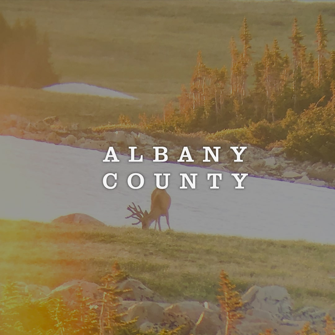 Albany County Cover Photo