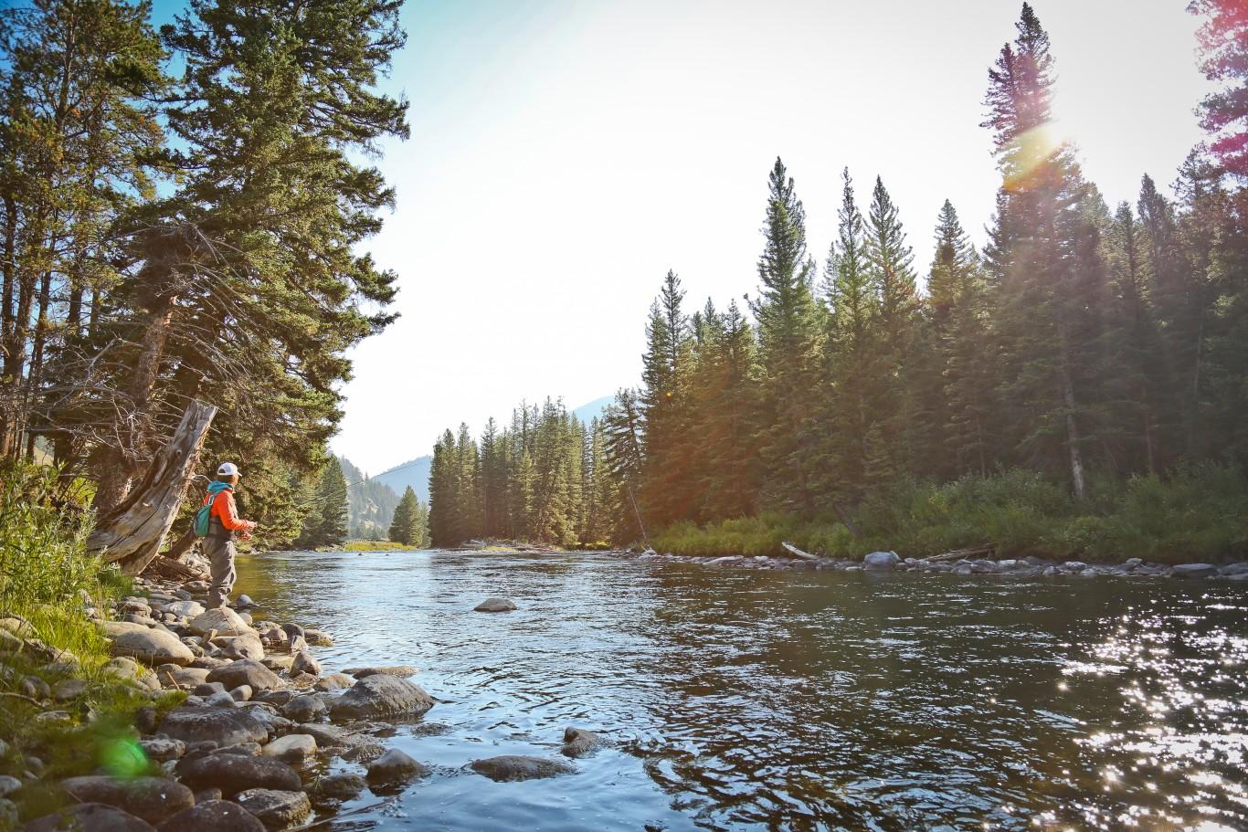 Living Wyoming Wild