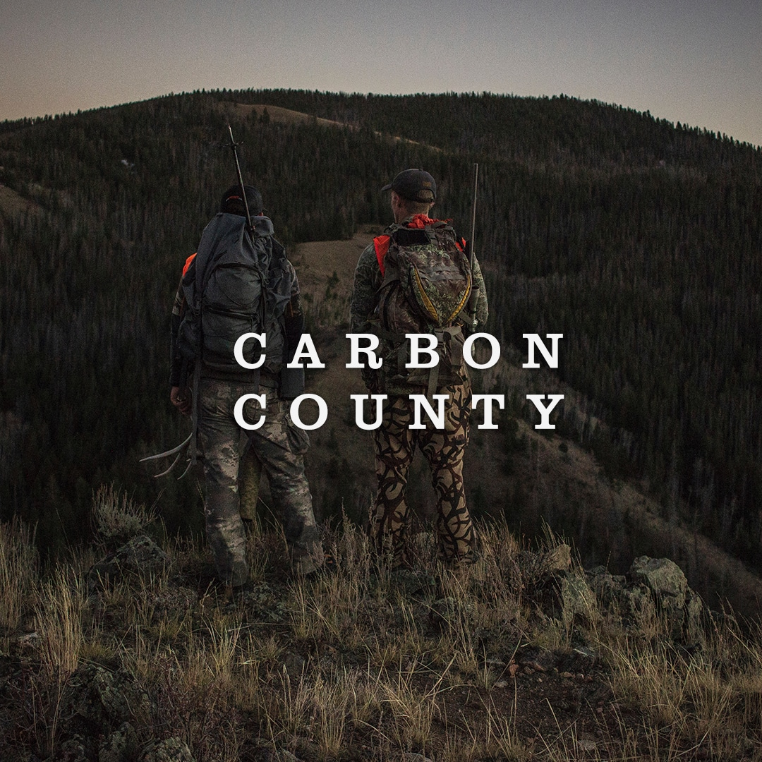 Carbon County Cover Image