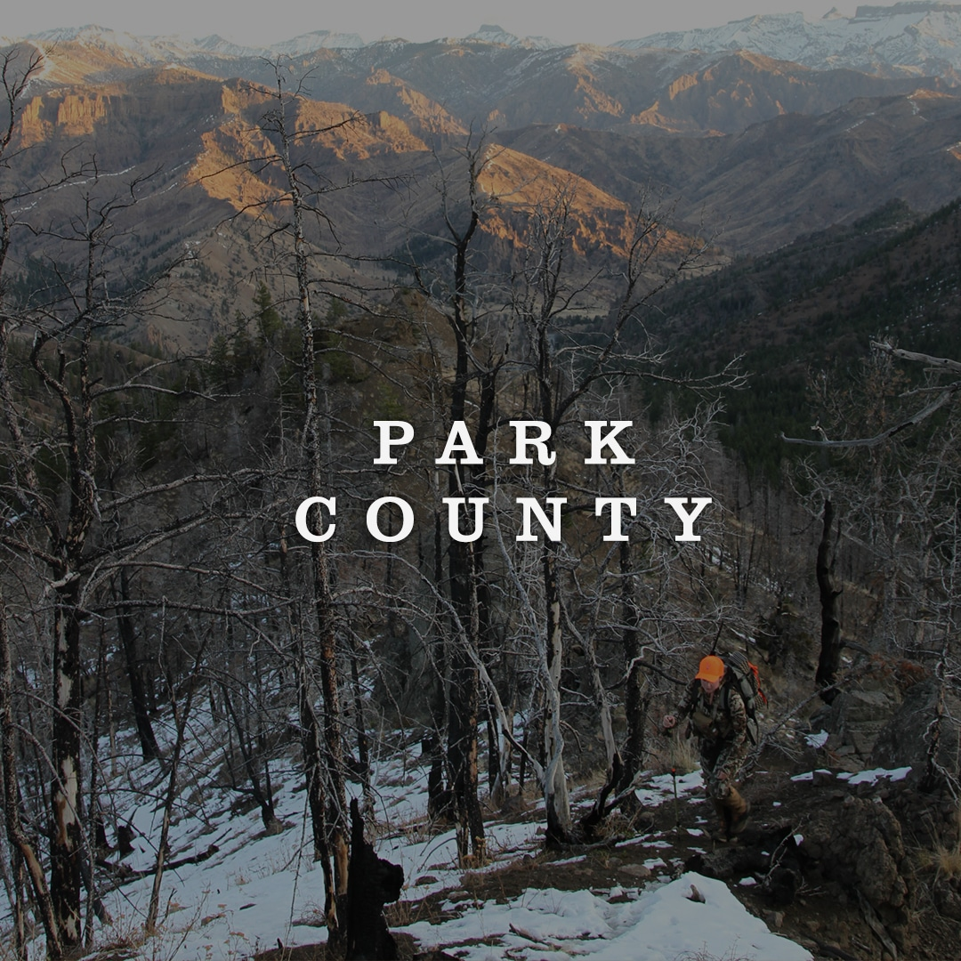 Park County Cover Image