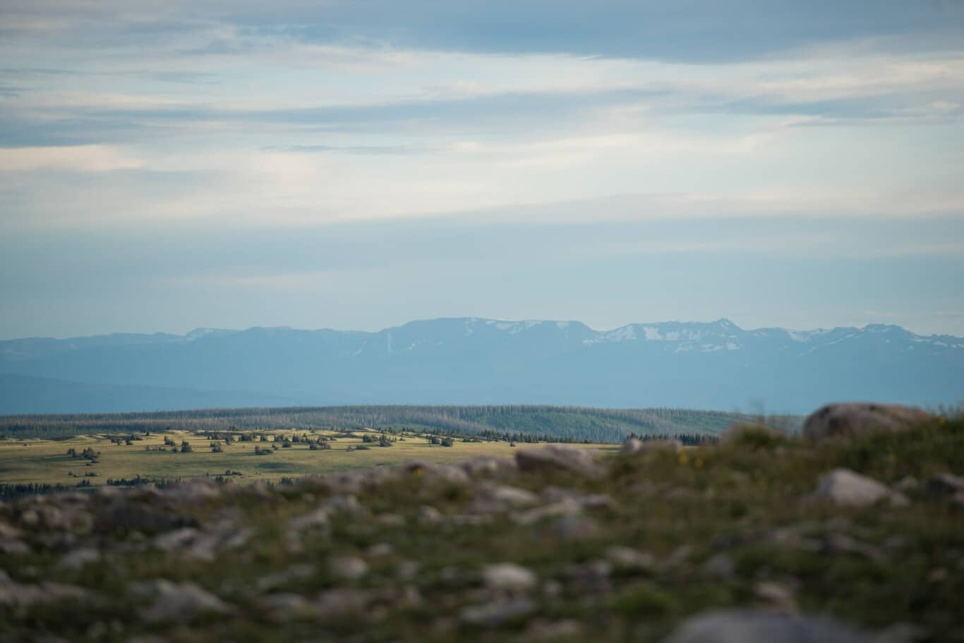A Wyoming Landscape