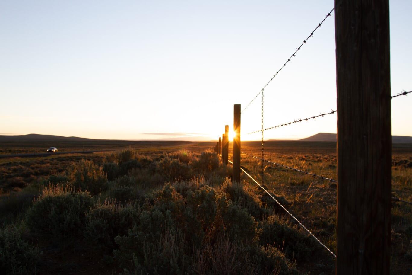 Sunrise Fenceline near Farson
