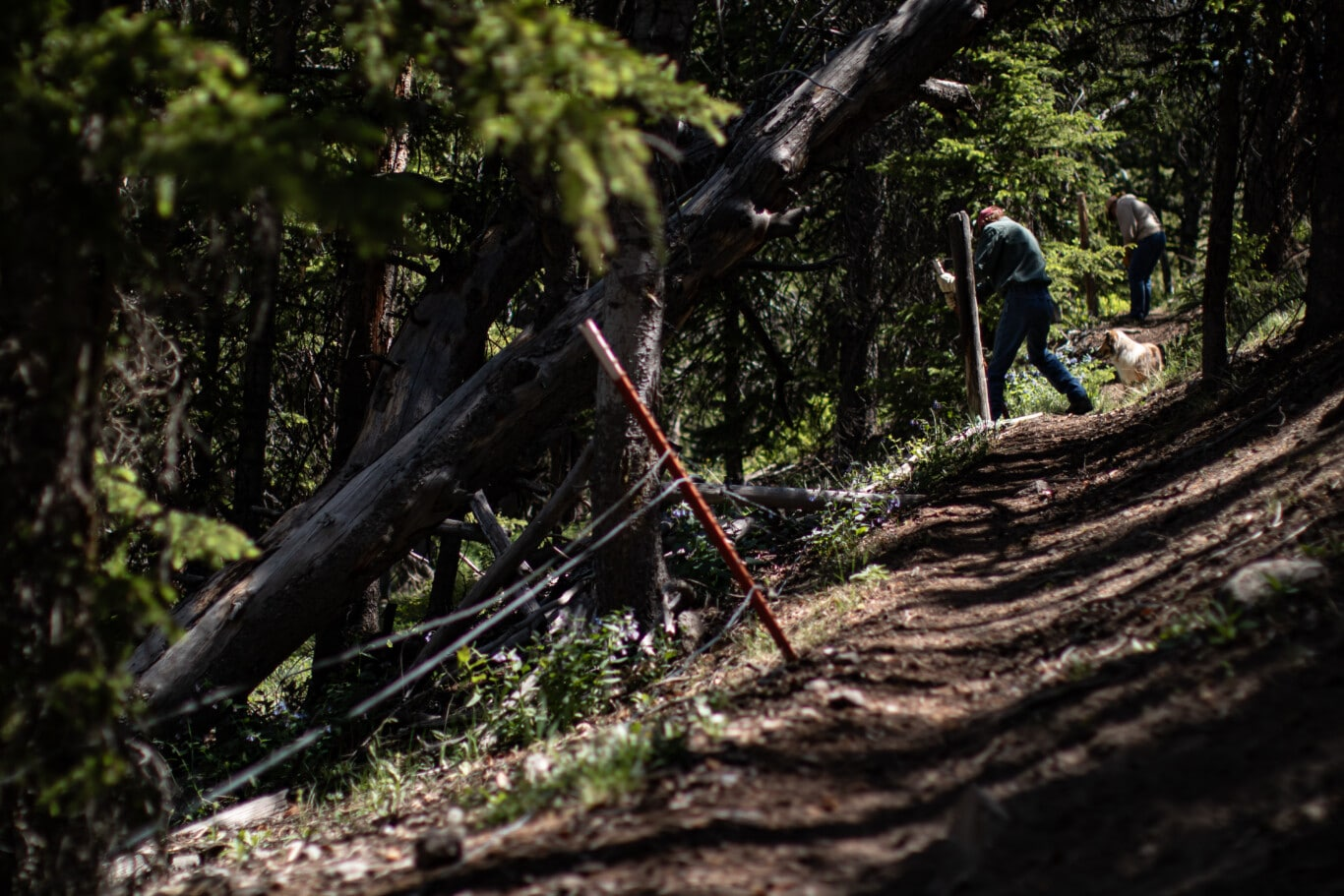 Wind River Fencing Project