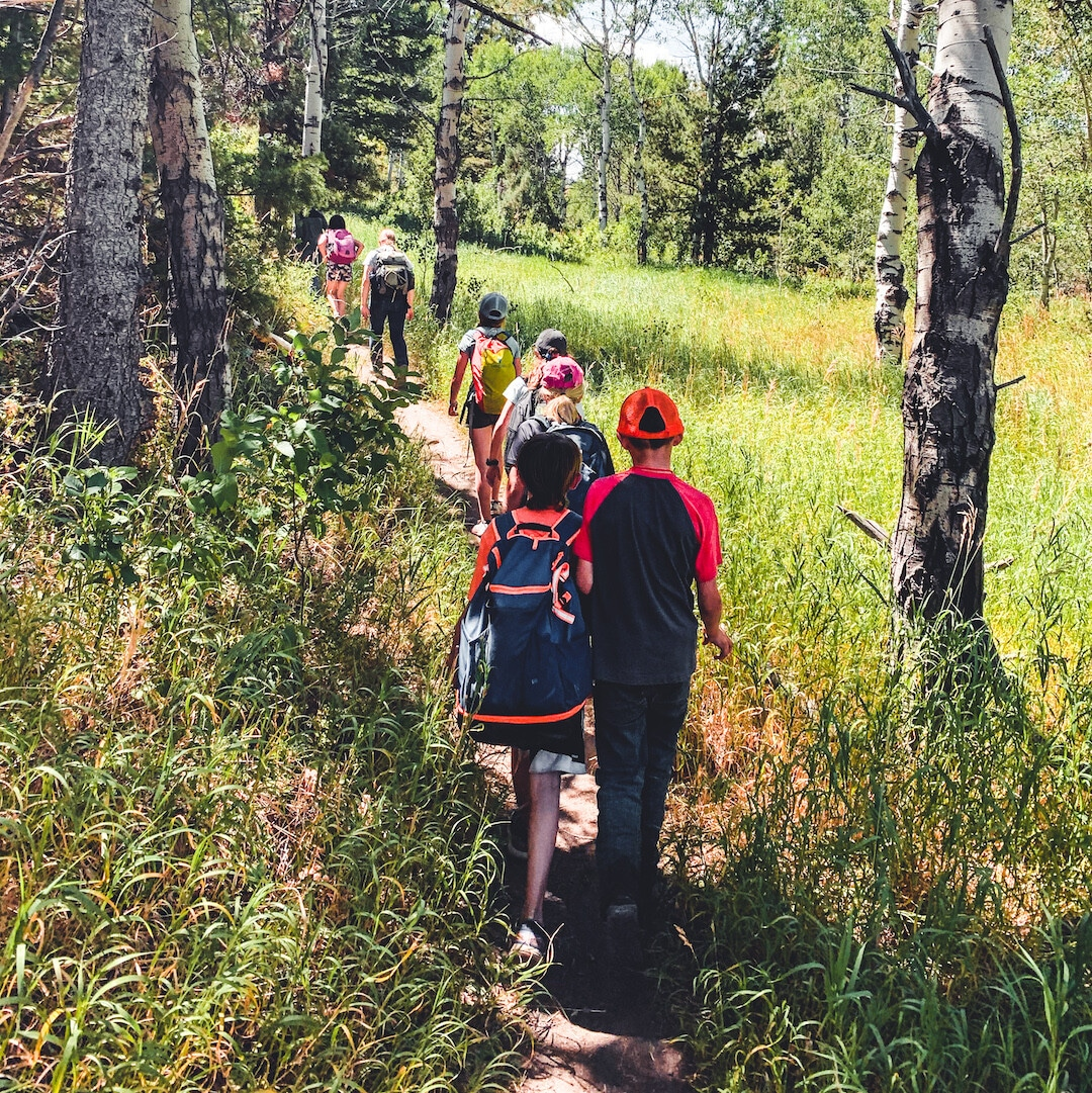 Students on a nature hike